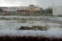 gobi hail-5