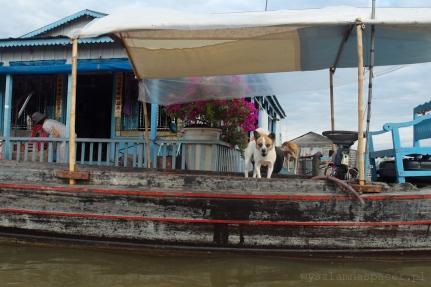 Kampong_Chhnang-46